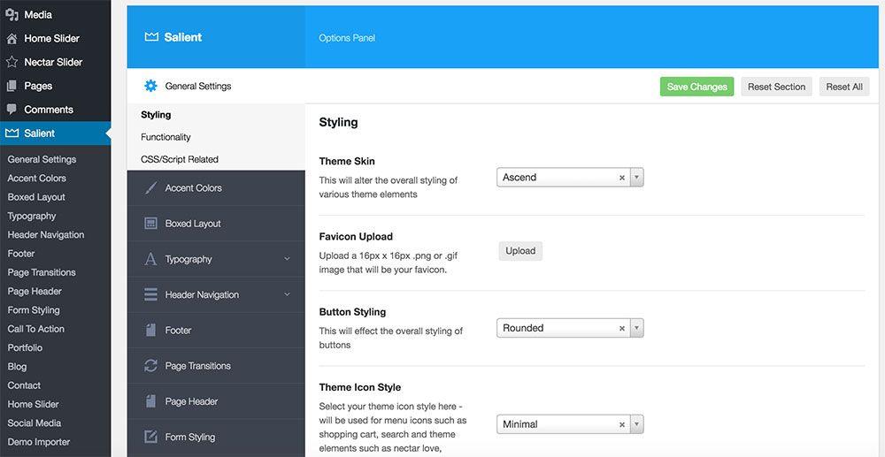 Ejemplo Panel de Personalización Plantilla WordPress