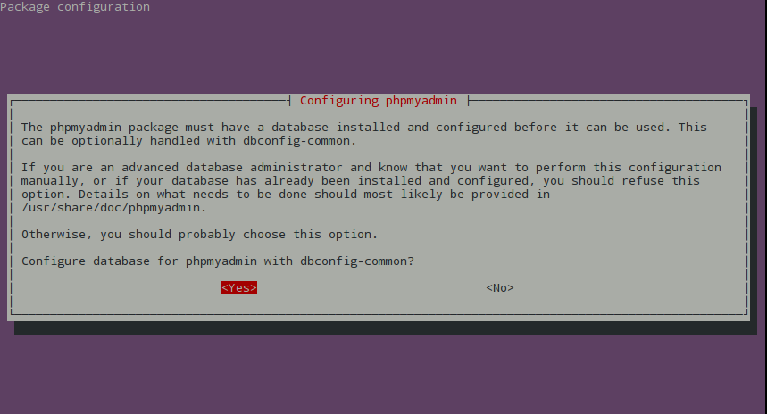 Instalar phpMyAdmin - Paso 2